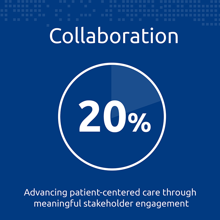 4. Collaboration (20%) — advancing patient-centred care through meaningful stakeholder engagement